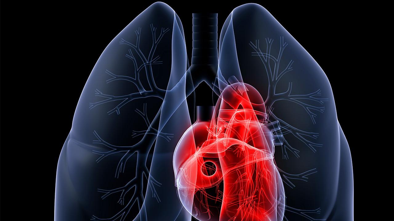 什么是小细胞肺癌