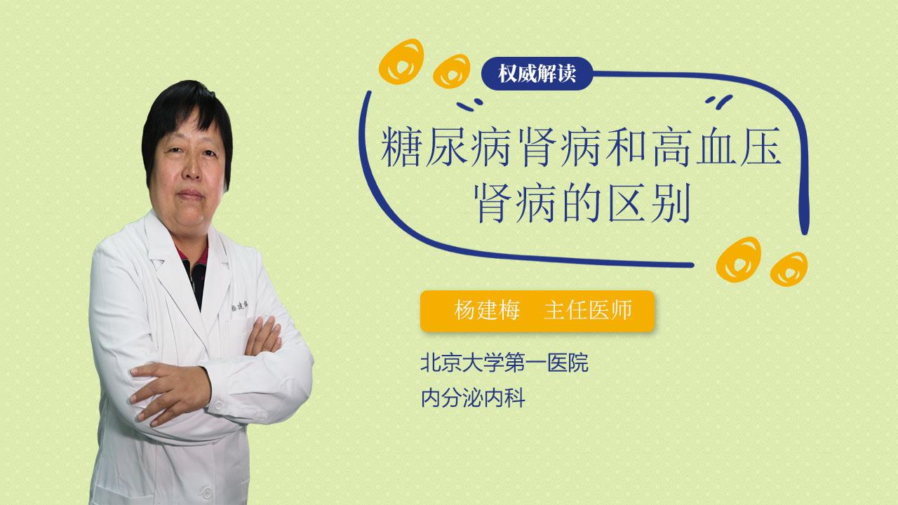 糖尿病肾病和高血压肾病的区别