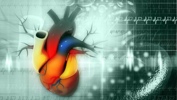 心肌梗塞急性发病期需要卧床多久?心肌梗塞治愈后会再次复发吗?