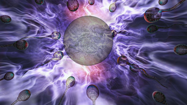 精子真的有限吗?如何提高精子质量和数量?