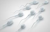 体外受精避孕效果怎么样 可靠的避孕措施是什么?【疾病科普】