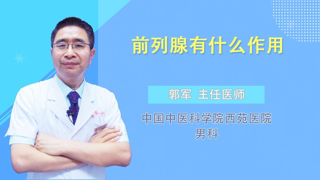 前列腺有什么作用