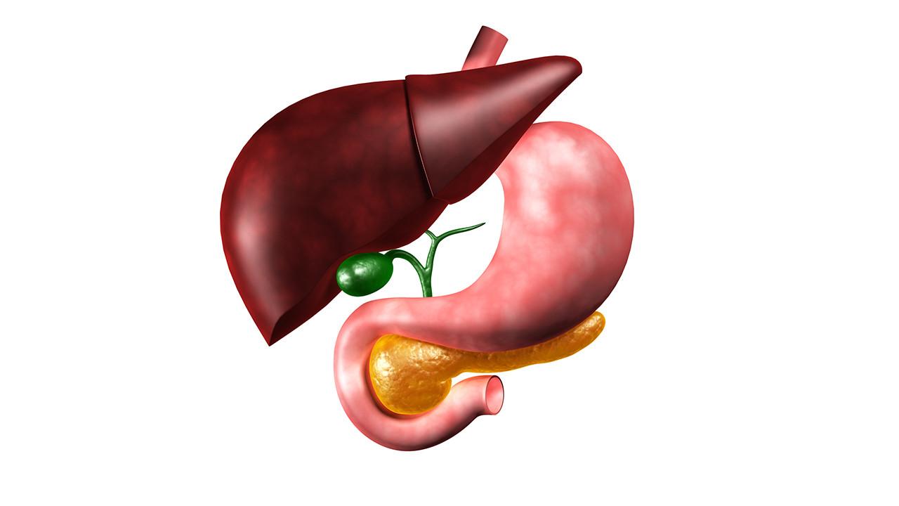 肝囊肿严重吗